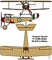 Nieuport-Macchi 11000 (Ni 11) French First World War single seat fighter colourized drawing.jpg