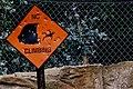 No Climbing or We Will Shoot 4888308791.jpg