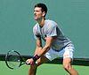Novak Djokovic in 2016