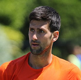 Novak Djokovic (34775891004) (cropped).jpg