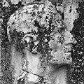 Numa Donzé (1885–1952) Kunstmaler, Porträt.jpg