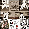 Okinawan Shorinji-ryu KarateJutsu Self Defense.jpg
