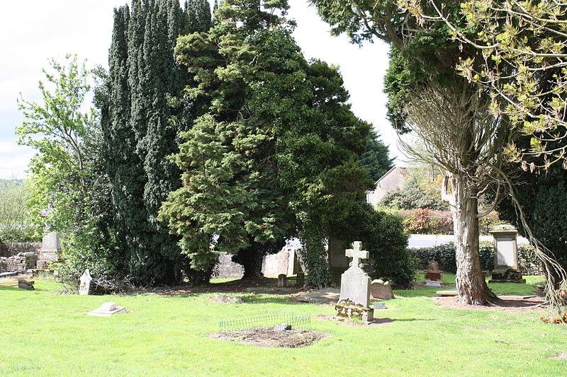 File:Old Leckpatrick Graveyard, Ballymagorry, May 2010 (08).JPG