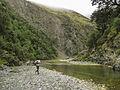 Orari River running.jpg