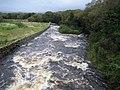 Owencashla River - geograph.org.uk - 256226.jpg