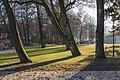Pörtschach Hans-Pruscha-Weg Parkbäume 29122015 9871.jpg