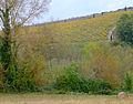 P1290078 49 Savennieres coteaux rwk.jpg