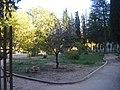 PARQUE NATURAL TEJEDA Y ALMIJARA - panoramio.jpg