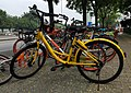 PKU-dedicated ofo bicycle at Wanquanhe Rd (20170723141751).jpg