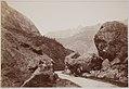 PM 109882 Souvenir de Voyage 1901.jpg