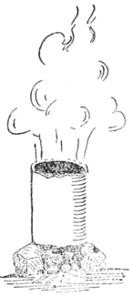 PSM V60 D414 Nuts of the urucury used for smoking rubber.png