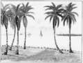 PSM V74 D434 Limon bay from the de lesseps house 1904.png