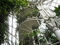 Palmenhaus 5 - panoramio.jpg