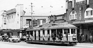Canterbury, New South Wales - Trams travelling along Canterbury Road