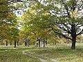 Panoramio-39827006.jpg