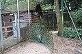 Parc du château Suresnes 33.jpg