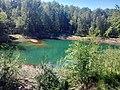 Park Krajobrazowy Łuk Mużakowa - jezioro 2.jpg