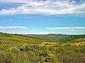 Parque Natural de Montezinho - Portugal (4035831166).jpg