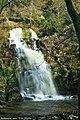 Parque da Cabreia - Portugal (4600525453).jpg