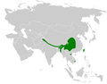 Parus monticolus distribution map.png