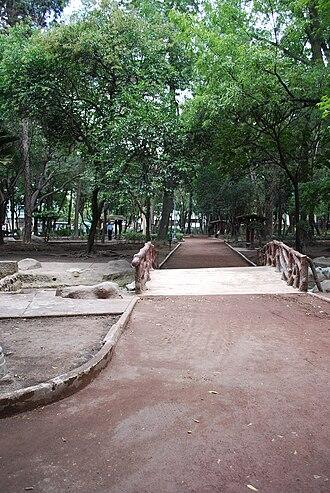 Parque México - Path in the park