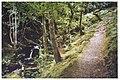 Path to Arthog Falls - geograph.org.uk - 1017955.jpg