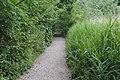 Path to Brotherton Park.jpg