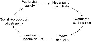 Hegemonic masculinity - The cyclical pattern of how hegemonic masculinity is produced, reproduced, and perpetuated.
