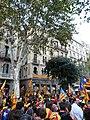 Pere Llibre P1160193.JPG