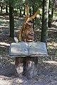 Pereslavl Arboretum Дендрарий Переславле 0056.jpg