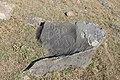 Petroglyphs from Ukhtasar 15092019 (324).jpg