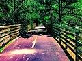 Photo-TrailFence.jpg