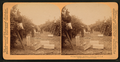 Picking oranges, Riverside, California, U.S.A, from Robert N. Dennis collection of stereoscopic views.png