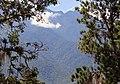 Pico Bolívar visto desde Mérida.jpg