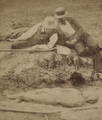 Picture of a petrified body, belonging to a pre-historic race, by W. L. Hall (cropped).png