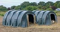 Pig houses, UK.jpg