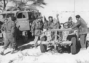 Mahal (Israel) - French volunteers in the Negev