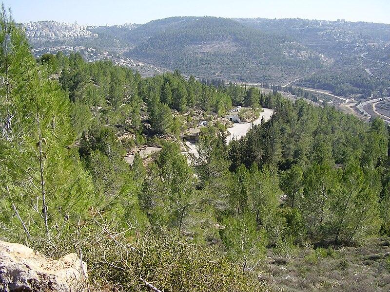 תצפית מהר חרת על ירושלים