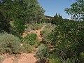 Pipe Springs National Monument, Arizona (6) (3734549500).jpg