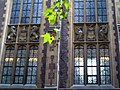 Plane branch and windows, Lincoln's Inn-254683892.jpg