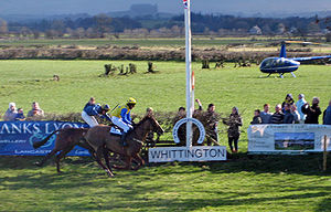 Point-to-point (steeplechase) - Two horses racing to the finish