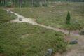 Poland Odry - stone ring.jpg
