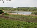 Pond seen from Tullyveery Road - geograph.org.uk - 751938.jpg
