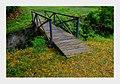 Ponte na Fazenda Ipanema.jpg