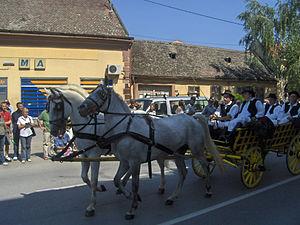 Đakovački vezovi - Parade wagon