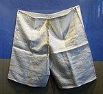 Priestly undergarments (39825730021).jpg