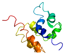 Protein COMMD1 PDB 2h2m.png