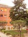 Quartiere XXVII Primavalle, Roma, Italy - panoramio.jpg