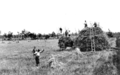 Queensland State Archives 4167 Stackbuilding at Clifton Darling Downs c 1930.png