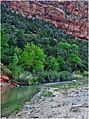 Quiet Spot, Zion NP, Sunrise, Virgen River 5-1-14ja (14352777102).jpg